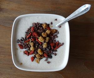 Paleo-yoghurt is lekker met fruit of 'superfoods'